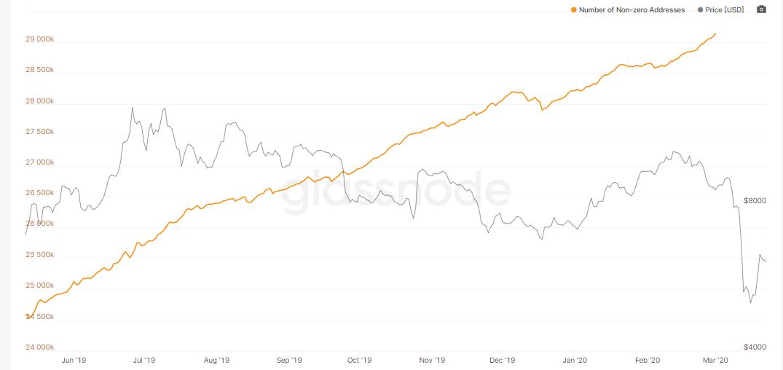 Los mínimos del primer trimestre de Bitcoin no eclipsan sus sólidos fundamentos del mercado
