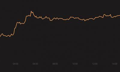 Tezos, Bitcoin SV, Chainlink deberían agradecer a los 'factores idiosincrásicos' por los retornos positivos del primer trimestre