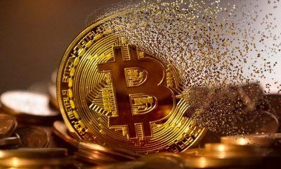 Bitcoin sufre una tercera mitad mientras la comunidad espera lo que viene