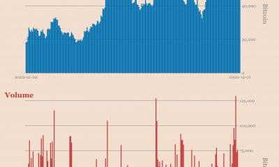 ¿Por qué los inversores de Bitcoin están volviendo a lo básico nuevamente?