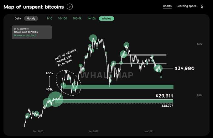 Las ballenas Bitcoin están moviendo fondos rápidamente, ¿que sigue?