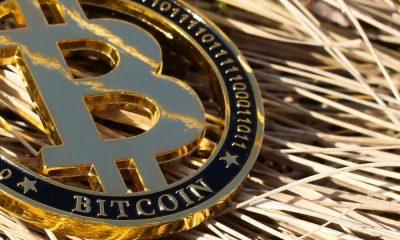 'Si ha arriesgado su dinero para comprar acciones de MSTR y Bitcoin sube ...'